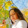 Woman among autumn leaves — Stock Photo