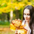Bouquet of autumn leaves — Stock Photo