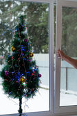Man opens Christmas window — Stock Photo