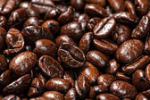 Arabic coffee beans — Stock Photo