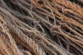Redes y cuerdas — Foto de Stock
