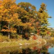 Early autumn trees reflecting on calm water — Stock Photo
