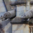 Armadillo gargoyles of the Basilica of the national vow, Quito, Ecuador — Stock Photo