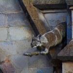 Fox gargoyle of the Basilica of the National Vow — Stock Photo