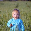 Royalty-Free Stock Photo: Child in a wheat field