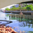 Stock Photo: Under small bridge in Eilat