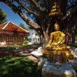 Stock Photo: Statue of Buddhin Niwet Thammaprawat ,Thailand
