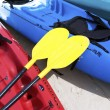 Stock Photo: Yellow kayak oar on red kayak