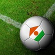 Stock Photo: Niger Flag Pattern of soccer ball in green grass