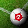 Tunisia Flag Pattern of a soccer ball in green grass — Lizenzfreies Foto