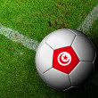 Tunisia Flag Pattern of a soccer ball in green grass — Photo