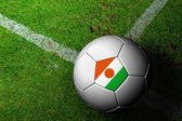 Niger Flag Pattern of a soccer ball in green grass — Stock Photo