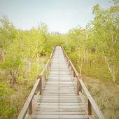 A wooden bridge — Stock Photo