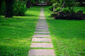 Walk way in the garden — Stock Photo