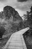 Wooden bridge — Foto de Stock