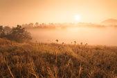 Montaña en tailandia — Foto de Stock