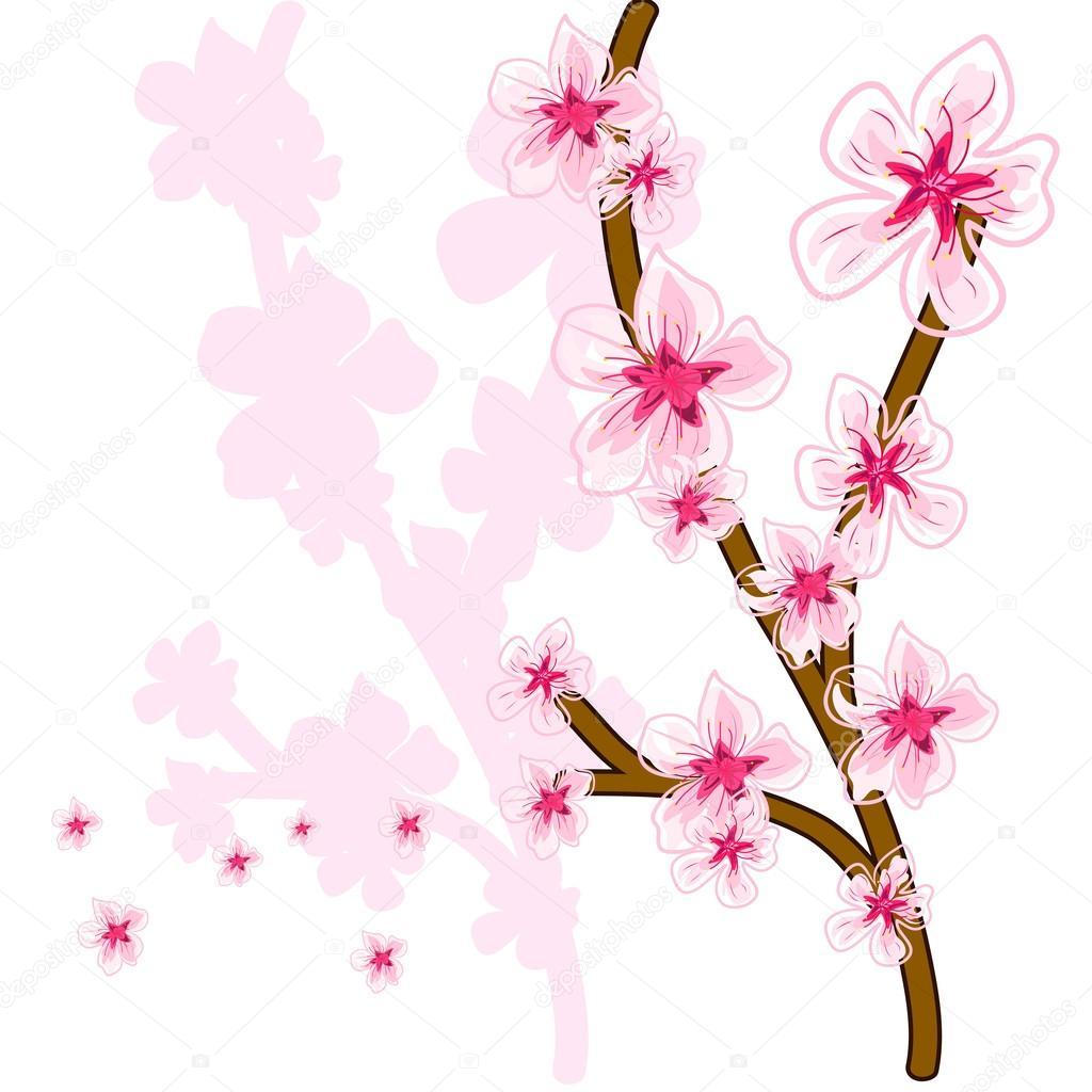 春天樱花盛开矢量手绘图模式– 图库插图