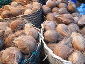 Coconuts in the basket — Stockfoto