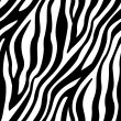 Zebra Stripes Seamless Pattern — Stock Vector #43861305