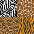 Animal Set - Giraffe, Leopard, Tiger, Zebra Seamless Pattern — Stok Vektör