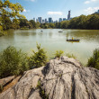 Stock Photo: NYC Central Park lake portrait