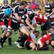 Rugby match — Foto de Stock