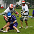 Stock Photo: Lacrosse
