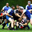 Mens rugby — Foto de Stock