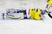 Ice Hockey game — Foto de Stock