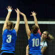 Volleyball game — Foto Stock