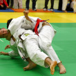 Stock Photo: Judo Turnier