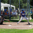 Baseball game — Stock Photo #17594027