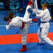Stock Photo: Karate fighters in action