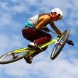 Mountainbike — Stock Photo #24855617