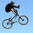 Mountainbike — Stock Photo #24855877