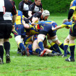 Rugby game - Foto Stock