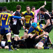 Rugby match — Foto Stock