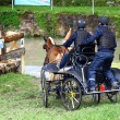 Driving horses tournament - Foto de Stock