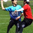 Ultimate Frisbee 2013 — Foto Stock