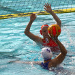 Stock Photo: Womens water polo