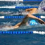 Постер, плакат: Swimming
