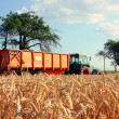 Tractorr next to the edge of wheat field — Stock Photo