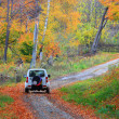 Jeep going through wild autumn forest — Stok fotoğraf