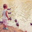 Little girl looking at swimming ducks — Stock Photo