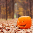 Stock Photo: Jack-o-lantern in forest