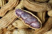 арахис — Стоковое фото