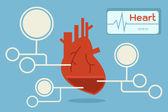 Heart infographic, vector — Stock Vector
