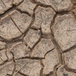 Cracks in dry soil. — Stock Photo #12013411