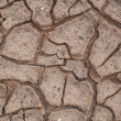 Cracks in dry soil. — Stock Photo #12013454