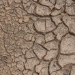 Cracks in dry soil. — Stock Photo #12014004